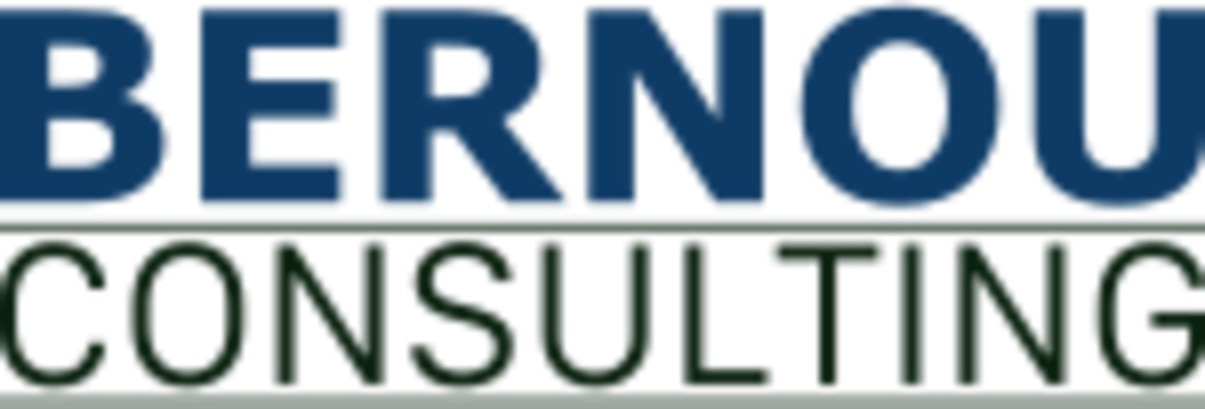 Bernou Consulting - Your partner for eCommerce